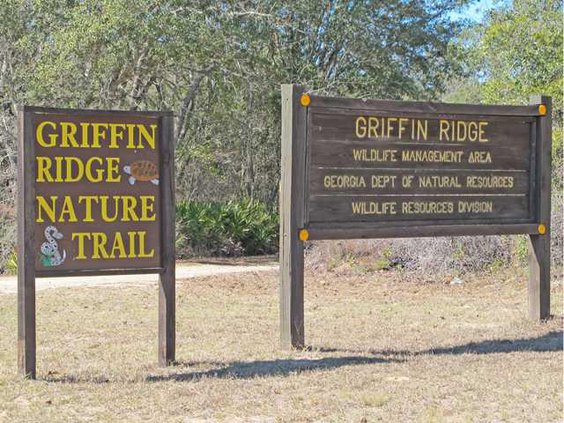 WEB Griffin Ridge WMA1