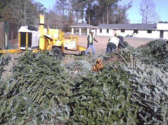 0116 tree chipper 1