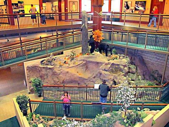 wildlife exhibit in interpretive center