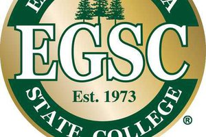 egsc-new-circle-gold-metalic-registered