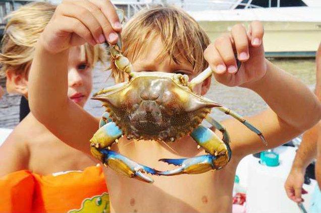 Crabbing Tourney file photo
