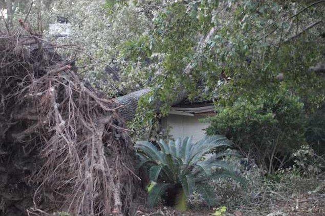 Hurricane Matthew2 012