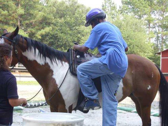 horses heroes1