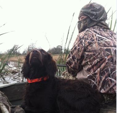 Duckhunting