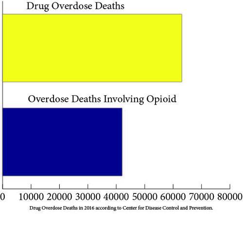 Opioid Crisis Graph.jpg
