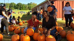 2019 Pumpkin Patch